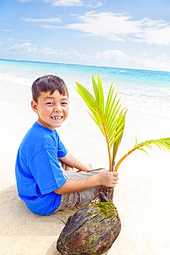 A Boy Holds A Coconut And Palm Frond While Sitting On The Beach At The Water's Edge, Kailua, Oahu, Hawaii, United States Of America