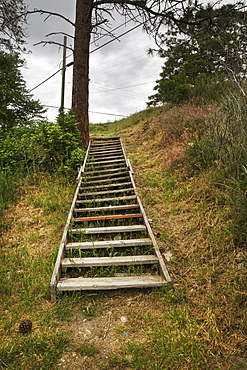 Wooden Steps Going Up A Hillside, Kelowna, British Columbia, Canada