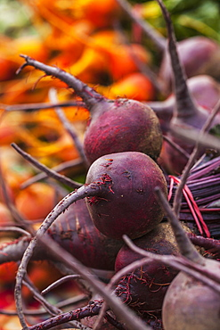 Red And Golden Beets At A Farmers Market, Toronto, Ontario, Canada