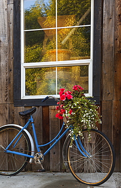 Decorative Flowers And Bikes Adorn The True Grain Bakery On Vancouver Island, British Columbia, Canada