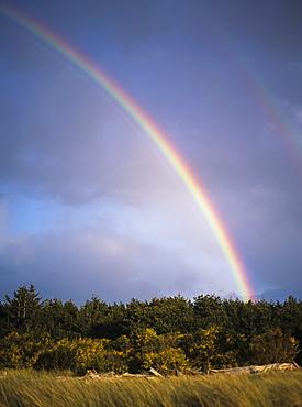 Rainbows Are Common Along The Oregon Coast, Florence, Oregon, United States Of America