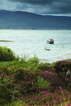 Inishbiggle Island On The Wild Atlantic Way, County Mayo, Ireland