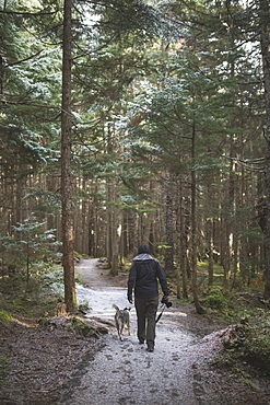 Man Hiking With His Dog On A Path In The Forest With A Light Dusting Of Snow On The Ground, Girdwood, Southcentral Alaska