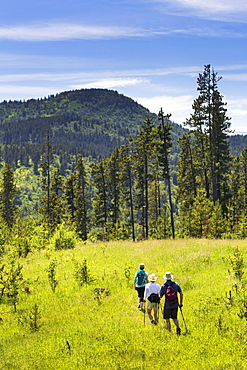 Hikers On Grassy Trail With Rolling Foothills In The Background, Kananaskis Country, Alberta, Canada