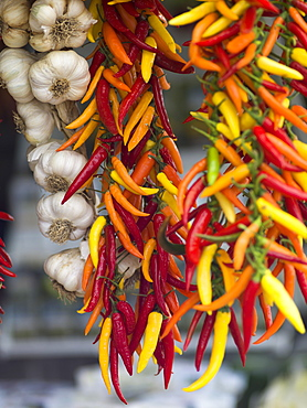 Hanging Colourful Peppers And Garlic Bulbs, Amalfi, Italy