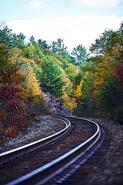 Railroad Tracks Through An Autumn Coloured Forest, Ontario, Canada