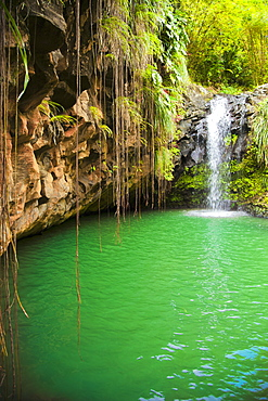 Lagoon With Small Waterfall, Annandale Falls, St. Georges, Grenada