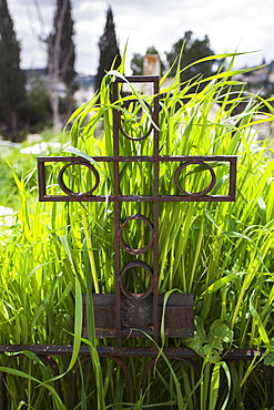 Metal Cross Headstone With Overgrown Grass In A Cemetery, Israel