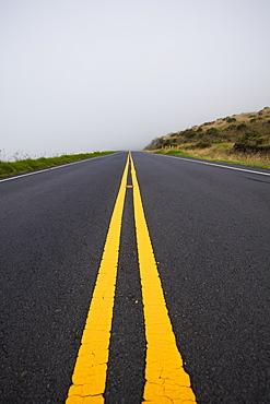 The Road To Haleakala Summit Fogged In At 6,000 Foot Elevation, Maui, Hawaii, United States Of America