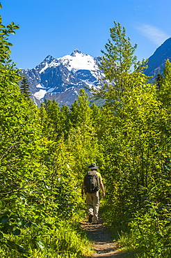 A Man Hiking At Dew Pond In The Chugach State Park In Eagle River On A Sunny Day In South-Central Alaska, Alaska, United States Of America