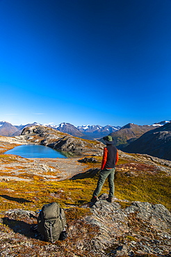 A Man Hiking Near An Unnamed Lake Near The Harding Icefield Trail In Kenai Fjords National Park On A Summer Day, South-Central Alaska, Alaska, United States Of America