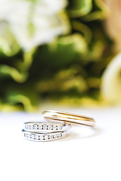 Wedding Bands, Waco, Texas, United States Of America