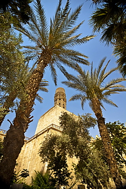 An Ancient Mud And Brick Minaret Framed By Date Palms, Cairo, Egypt