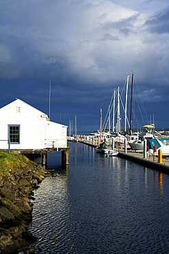 Port Townsend, Washington State, Usa; Point Hudson Marina