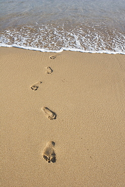 Footprints In The Sand, South Kauai, Hawaii, Usa