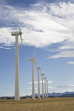 Pincher Creek, Alberta, Canada; Wind Turbines In A Row In A Wheat Field