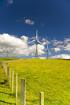 Wind Turbines In A Field; Palmerston North, New Zealand