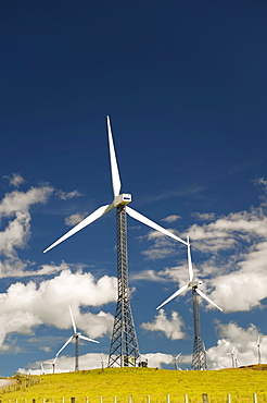Palmerston North, New Zealand; Wind Turbines In A Field