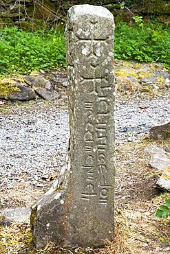 Old Gravestone; Inchagoill Island, County Mayo, Ireland