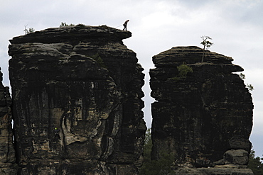 A person preparing to rappel down a rock formation, saxon switzerland, saxony, germany