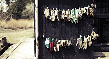 Gloves drying on clothesline at yard, Hamasaka, Japan