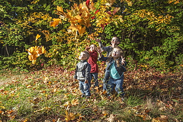 Four kids trying to catching falling autumn leaves
