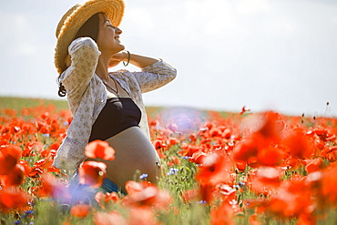 Carefree pregnant woman in sunny, idyllic rural red poppy field