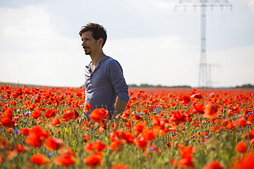 Man standing in sunny, idyllic rural red poppy field