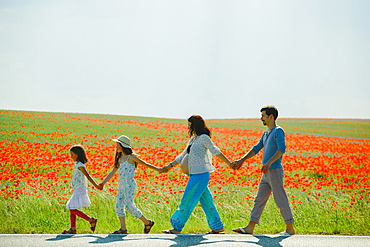 Pregnant family holding hands, walking along sunny, rural red poppy field