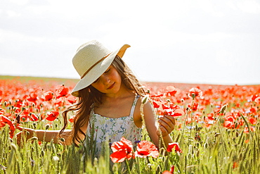 Serene girl picking red poppies in sunny, idyllic rural field