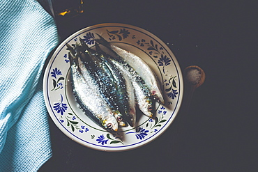 Still life fresh salted, whole sardines on plate