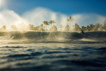 Male surfer paddling out over breaking wave on ocean at sunrise, Sayulita, Nayarit, Mexico