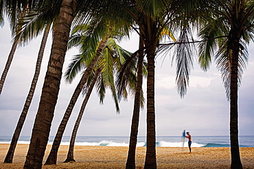 Male surfer with surfboard on tropical beach with palm trees, San Pancho, Nayarit, Mexico