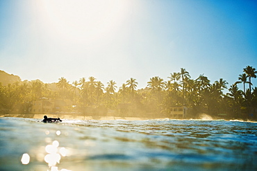 Silhouette male surfer paddling out on tropical ocean at sunrise, Sayulita, Nayarit, Mexico