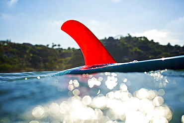Bright red fin on surfboard floating on sunny ocean