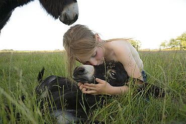 Girl hugging and kissing baby donkey in grass
