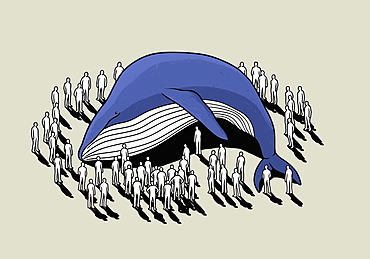 Crowd surrounding beached whale