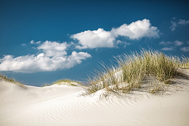 Idyllic sand dunes under sunny blue sky with clouds, Nebel, Schleswig Holstein, Germany
