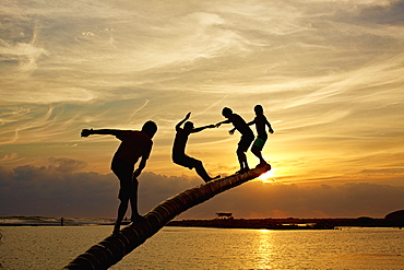 Silhouette carefree kids playing on tree trunk over sunset ocean, La Ticla, Michoacan, Mexico