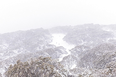 Scenic view skiers on snowy mountain slope, Falls Creek, Victoria, Australia