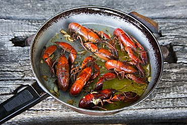 High angle view of crayfish in frying pan