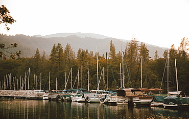 Sailboats moored in lake harbor, Whiskeytown Lake, Redding, California, USA
