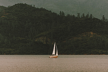 Sailboat on tranquil Whiskeytown Lake, Redding, Shasta County, California, USA