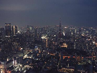 Illuminated highrise buildings and cityscape at night, Tokyo, Japan
