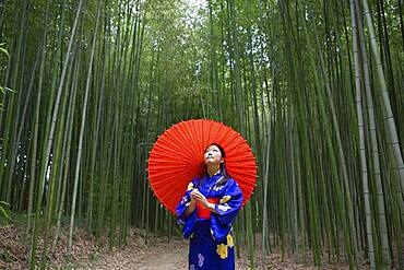 Young woman in kimono with parasol looking up at bamboo trees