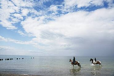 Girls riding horses in sunny Baltic Sea, Germany