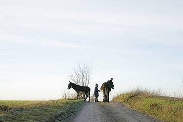 Girl with donkeys on rural road