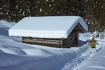 Woman snowshoeing in deep snow along hut, Bavaria, Germany