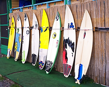 Surfboards in a row at store