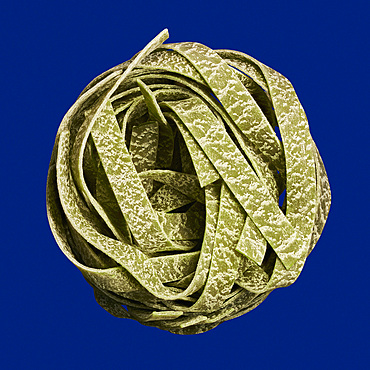 Close up nest of uncooked spinach fettuccini noodles on blue background